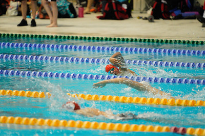 2003142385 -  Session 3 Swim London Spring Open Meet 2020 on March 14, 2020 at Aquatics Centre, Queen Elizabeth Olympic Park, E20 2ZQ, London. Photo: Ben Davidson, www.bendavidsonphotography.com