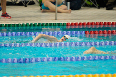 2003142375 -  Session 3 Swim London Spring Open Meet 2020 on March 14, 2020 at Aquatics Centre, Queen Elizabeth Olympic Park, E20 2ZQ, London. Photo: Ben Davidson, www.bendavidsonphotography.com