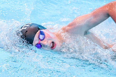 1906234017 - Ben Davidson Photography Summer Open Meet 2019 Session 4on June 23, 2019 at London Aquatics Centre, Olympic Park, London E20 2ZQ, London. Photo: Ben Davidson, www.bendavidsonphotography.com