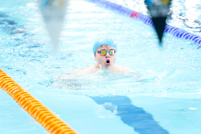 2002221290 -  (200m Free (G), 200m Back (B), 400IM (G)) Sussex Country Championships (Session 5 PM) on February 22, 2020 at K2, Pease Pottage Hill, Crawley RH11 9BQ, Crawley. Photo: Ben Davidson, www.bendavidsonphotography.com