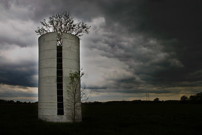 En route to Eureka Springs, Arkansas, we spied this silo between Kansas City and Joplin.
