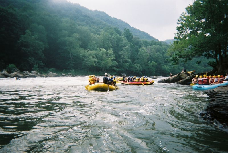 Other rafts on the river