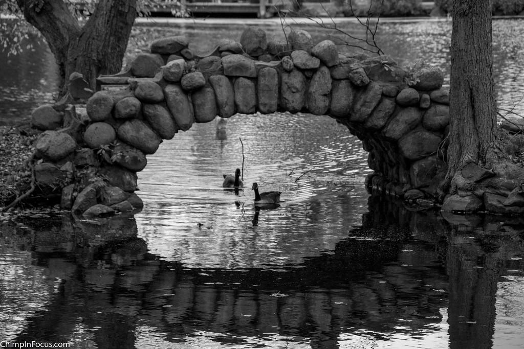 Arch Reflection (B&W)