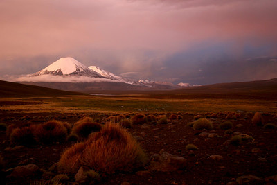 Sunset in the Altiplano. (Parinacota Volcano in the background)