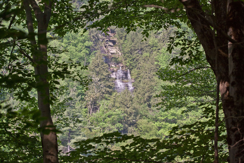 """Waterfall as seen from """"Tigertown""""."""