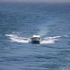 JT following BI ferry out