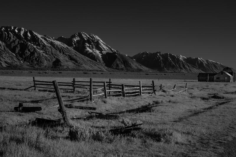 Mormon Row - Falling Fence - Infrared - GTNP