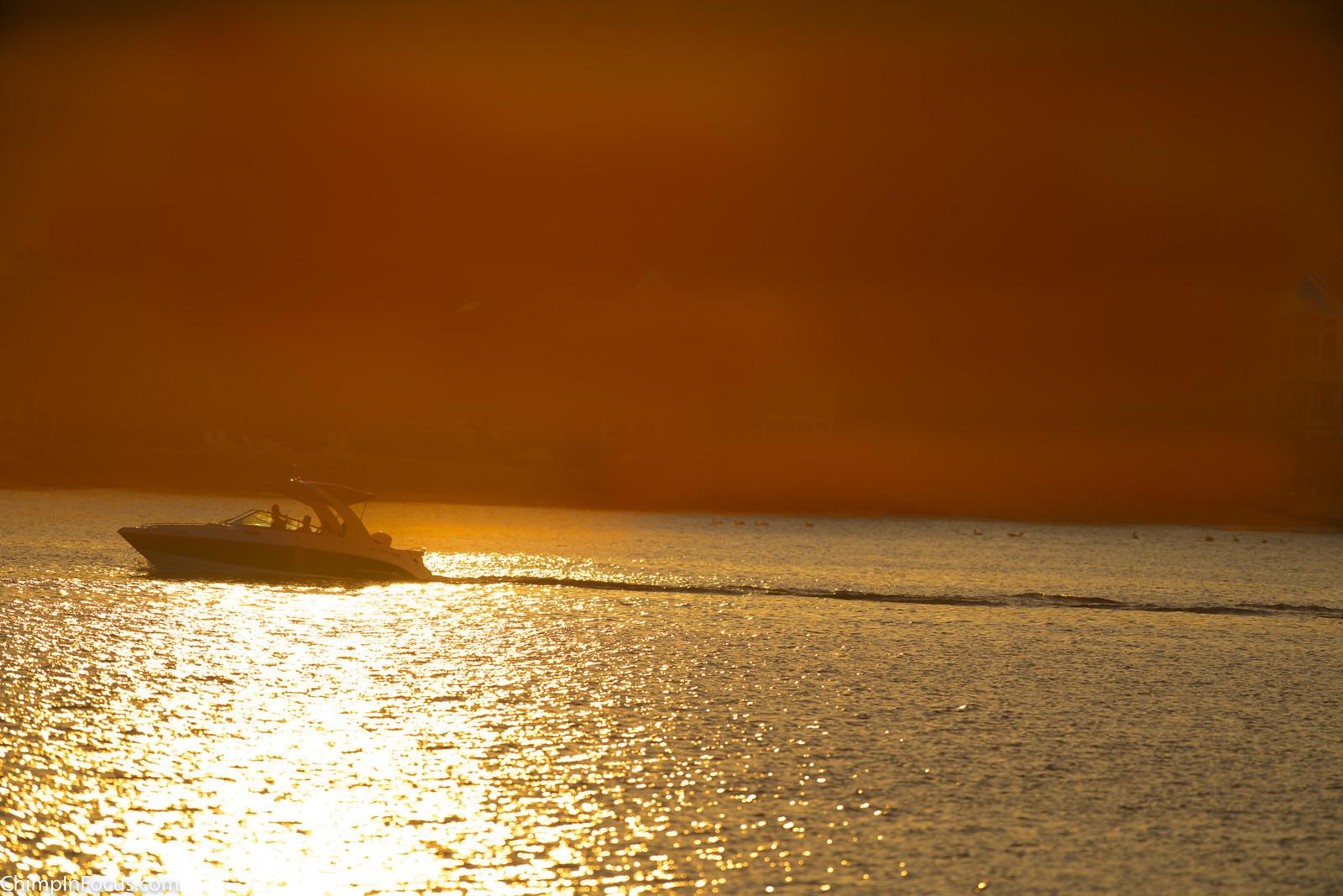 Cruising in the Sun