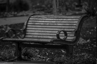 Park Bench (B&W)
