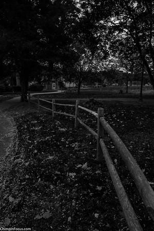 Park Fence (B&W)