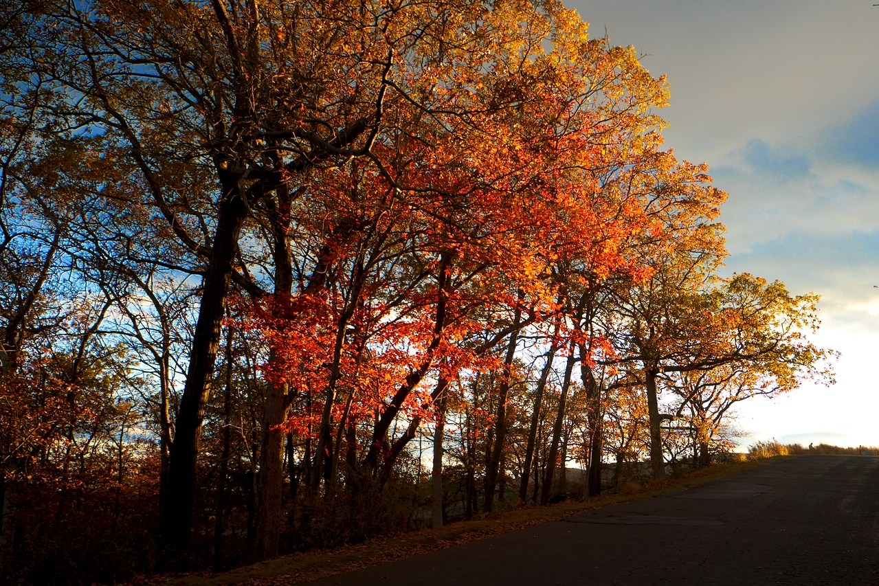Bear Mountain Fall Colors Sunset