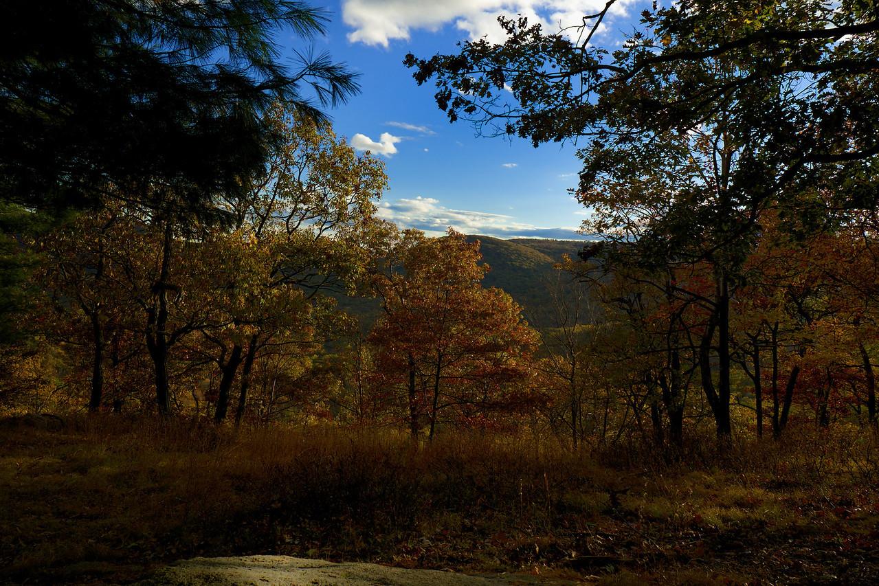 Bear Mountain Vista