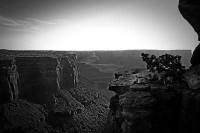 Shafer Canyon,  Canyonlands National Park, Utah