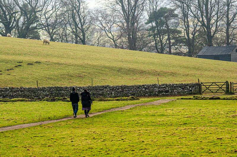 Pasture & Walkers - Newbiggin - Barnard Castle, England, UK