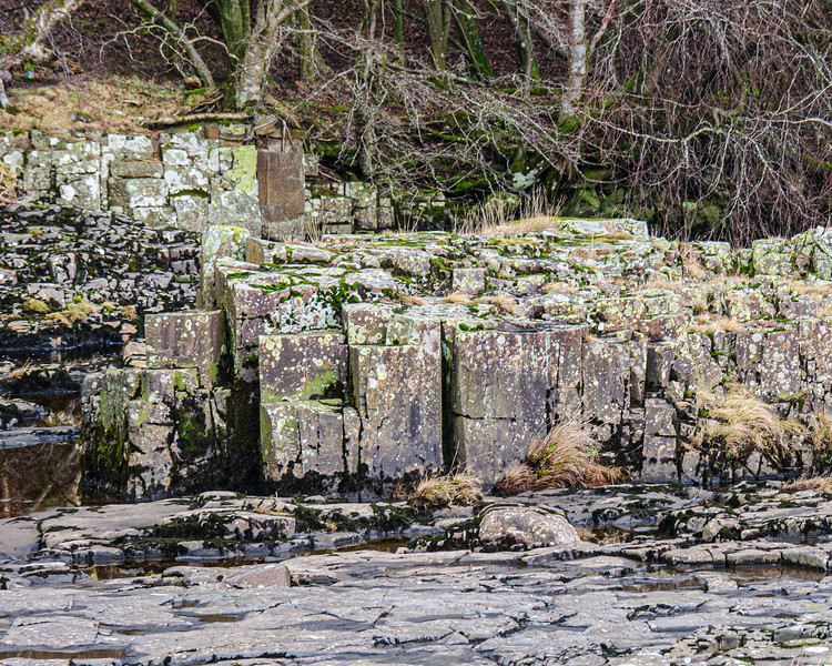 Dolerite (aka Whinstone) @ Low Force - Newbiggin - Barnard Castle, England, UK