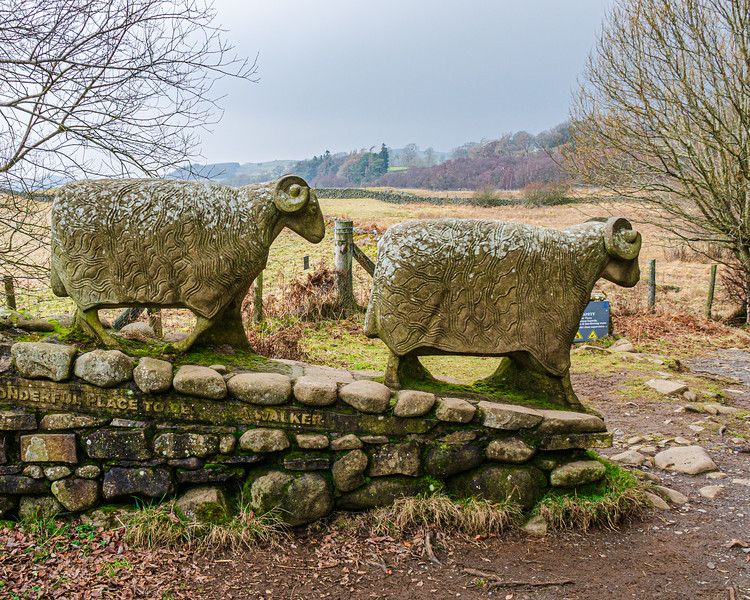 Sheep Sculptures (Left) by Keith Alexander c. 2002 @ Low Force - Newbiggin - Barnard Castle, England, UK
