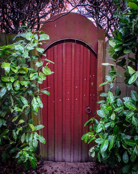 Garden Door on Clay Lane- Durham, England, UK