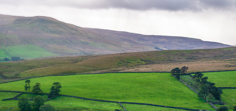Fossdale pasture from Cliffgate Rd - Hawes, Wensleydale, North Yorkshire, England, UK