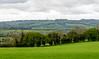 Pasture - Bourton-on-the-Water, England, UK