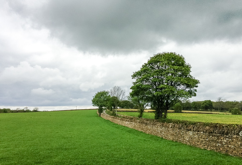 Pasture & Stone Wall - Upper Slaughter, England, UK