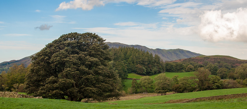 Countryside along B5289 near Crummock Water - The Lake District