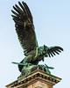 Turul Statue (c. 1905 by Gyula Jungfer) @ Buda Castle - Budapest, Hungary, EU