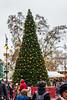 Christmas Tree on Vörösmarty tér - Budapest, Hungary