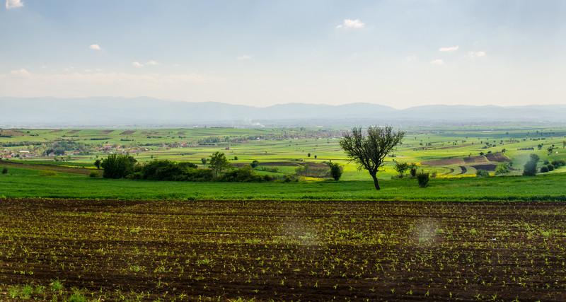 Farmland Near Janjevo, Kosovo