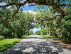 Avenue D in Late Summer - Apalachicola, FL