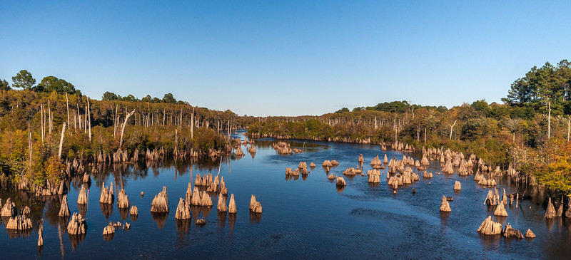 Dead Lakes IV from Hwy 71 Bridge - Wewahitchka, FL