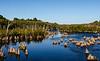Dead Lakes II from Hwy 71 Bridge - Wewahitchka, FL