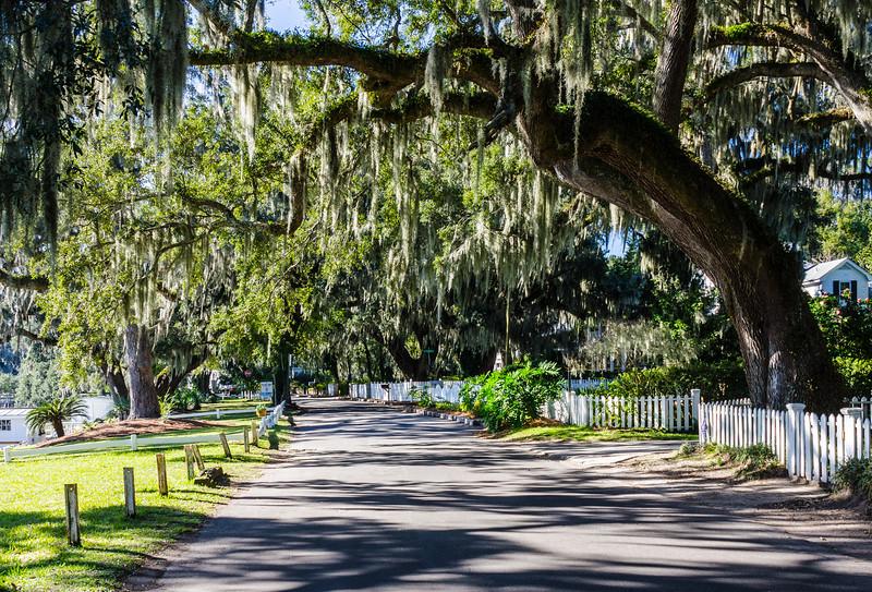 Bluff Drive 2 - Isle of Hope, Savannah, GA