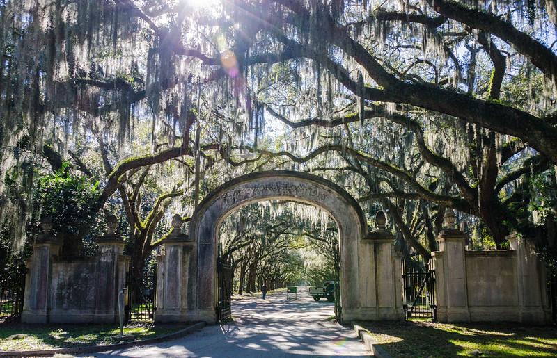 Wormsloe Plantation c. 1913 @ Wormsloe Historic Site - Savannah, GA