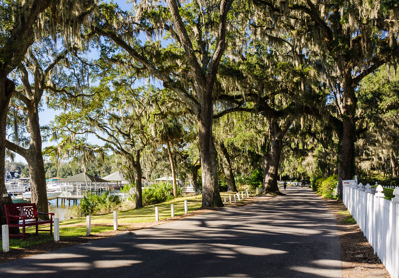 Bluff Drive - Isle of Hope, Savannah, GA