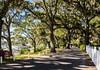 Bluff Drive - Isle of Hope, Savannah, GA