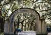 Wormsloe Arch c. 1913 @ Wormsloe Historic Site - Savannah, GA