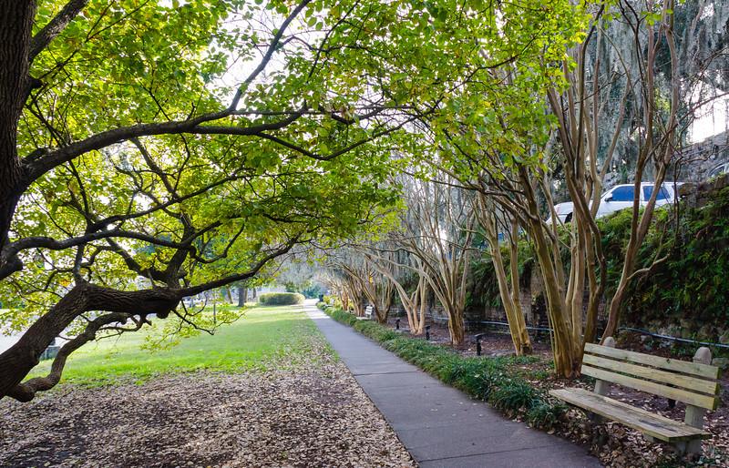 East River Street Tree-Lined Sidewalk & Bench - Savannah, GA