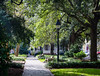 Peaceful Washington Square - Savannah, GA