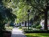 Peaceful Washington Square - Savannah, GA