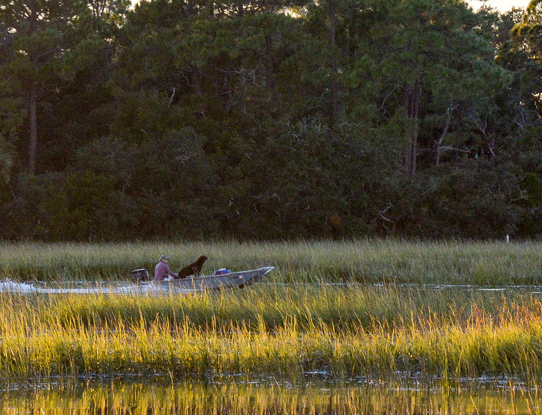 Fisherman & Dog on Horse Pen Creek - Tybee Island, GA