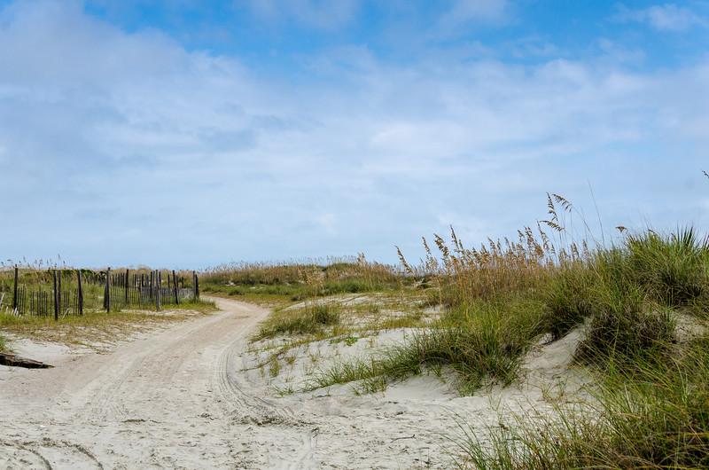 Winding Beach Track @ Little Tybee Island Beach - Tybee Island, GA