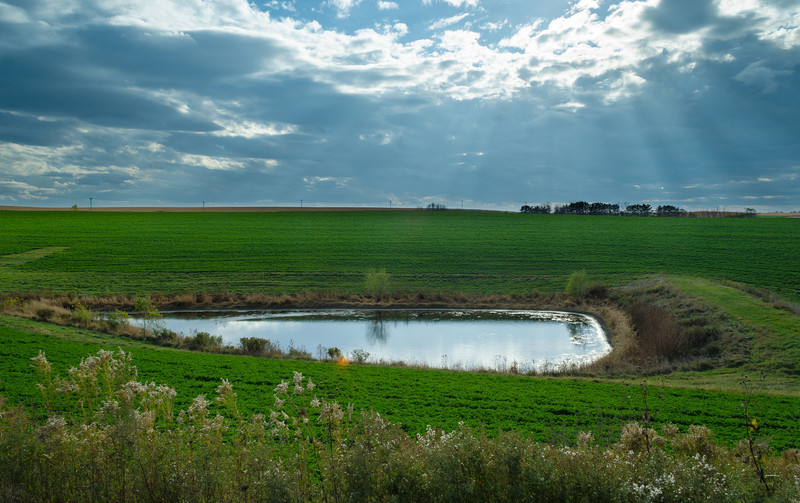 Farm Pond - Kellogg, MN by Paul Diming