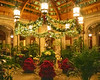 Winter Garden in the Biltmore House @ Biltmore Estate - Asheville, NC