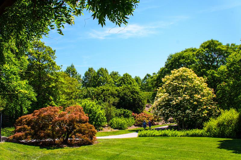 Shrub Garden 1 @ Biltmore Estate - Asheville, NC