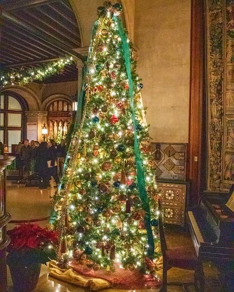 Christmas Tree 2 @ The Biltmore Estate - Asheville, NC, USA