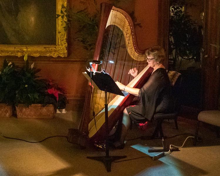 Harpist Performing @ The Biltmore Estate - Asheville, NC, USA