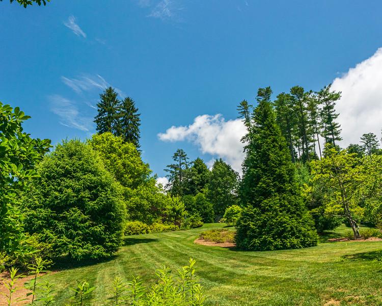 Azalea Garden in the Azalea Garden @ Biltmore Estate - Asheville, NC