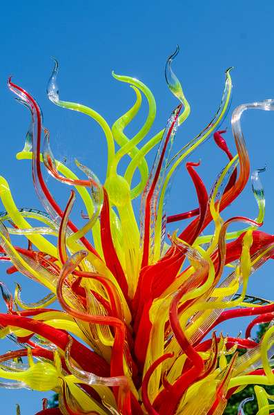 Electric Yellow and Deep Coral Tower, 2017 by Dale Chihuly, American, b. 1941  in the Rose Garden @ Biltmore Estate - Asheville, NC