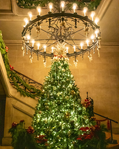 Stairwell Christmas Tree @ The Biltmore Estate - Asheville, NC, USA