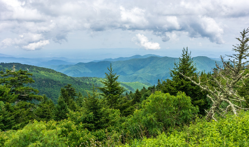 View from the Lodge @ Mt. Mitchell State Park - Burnsville, NC